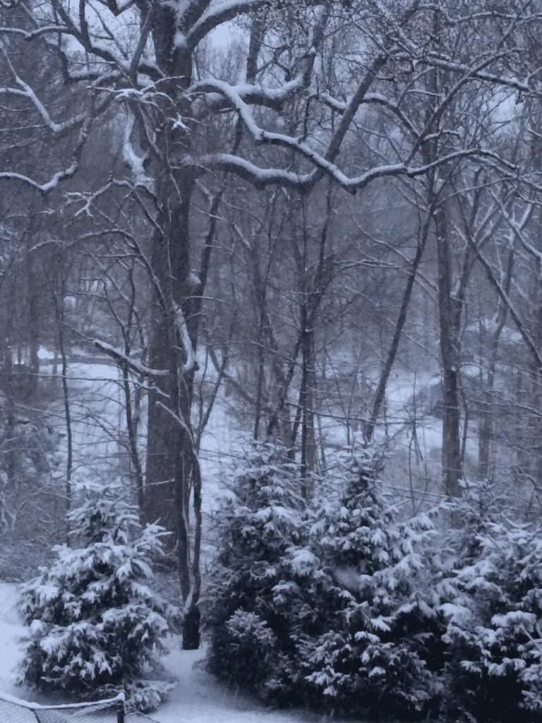 Taken from the TreeHouse this evening, the first day of spring