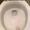 Email0FacebookTwitter1Reddit0X Linkedin0 Stumbleupon0 EXTRA! EXTRA!  Read all about it:  my son learned how to clean a toilet this week.  In earnest.  We're making real HEAD way. We had friends over […]