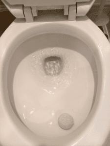 Clean bowl